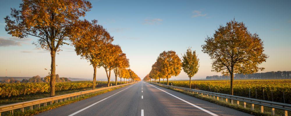 Route de province